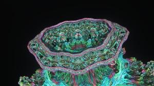 Mandelbulb image